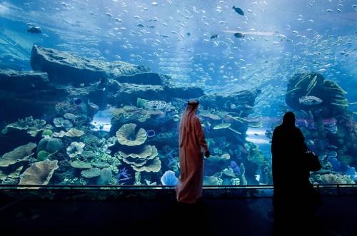 Dubai-Mall-14